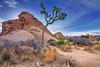 California, Joshua Tree National Park,  Jumbo Rocks, Landscape, HDR, 加利福尼亚, 约束亚树国家公园, 风景, 高动态范围拍摄
