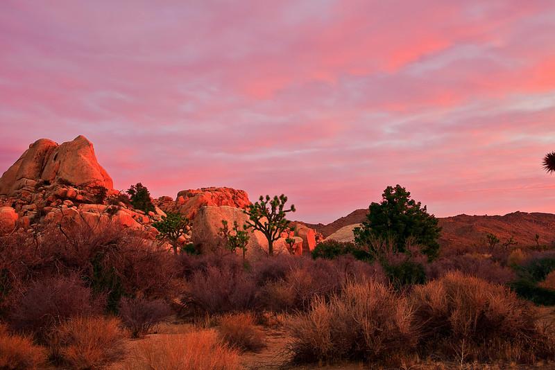 California, Joshua Tree National Park, Dawn, Rocks, Landscape, 加利福尼亚, 约束亚树国家公园, 黎明, 风景