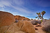 California, Joshua Tree National Park, Jumbo Rocks, Landscape, 加利福尼亚, 约束亚树国家公园, 风景