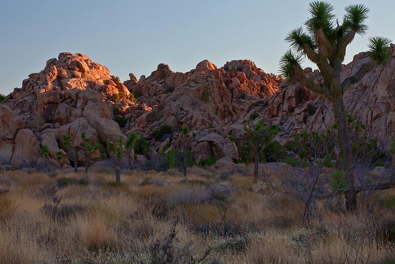 California, Joshua Tree National Park, Rocks, Sunset, Landscape, 加利福尼亚, 约束亚树国家公园, 风景