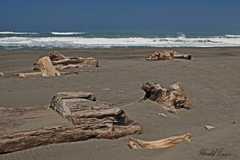 A beach scene taken Apr 24, 2010 near Fortuna, CA.