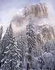 New snow, El Capitan in winter