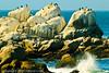 A landscape taken Sep. 28, 2011 in Monterey, CA.