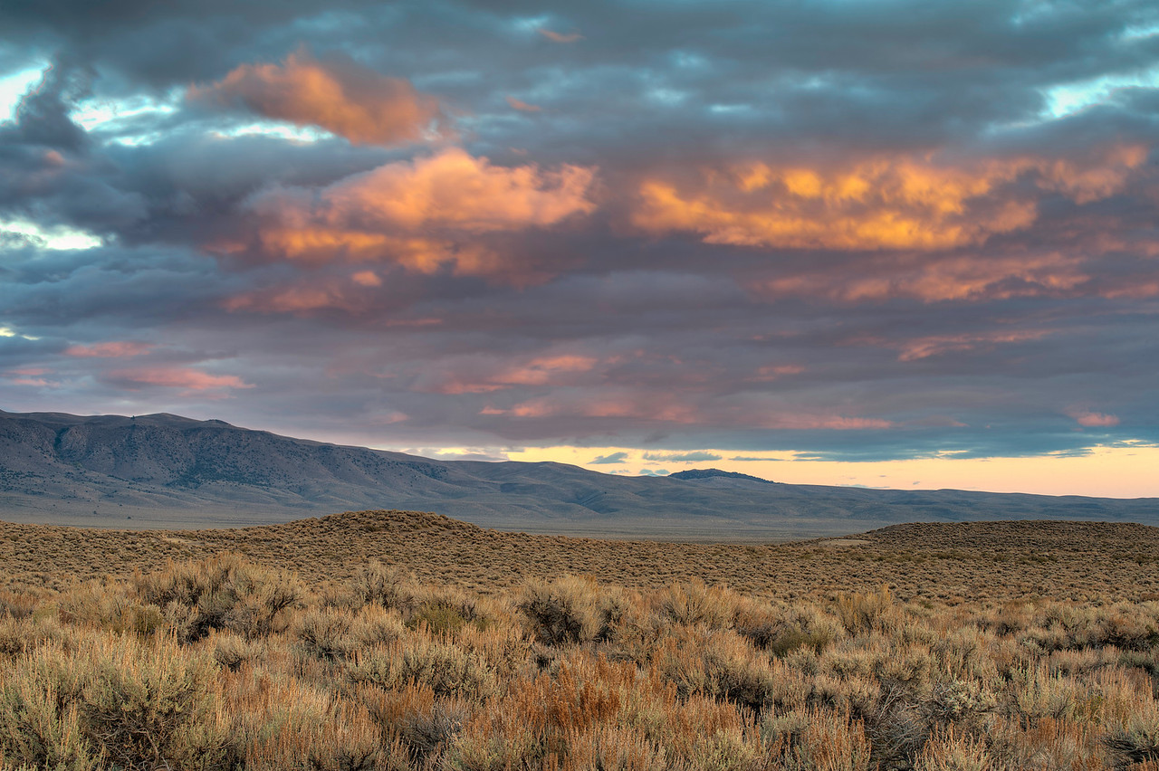 Sage and evening sky, Long Valley Cadera