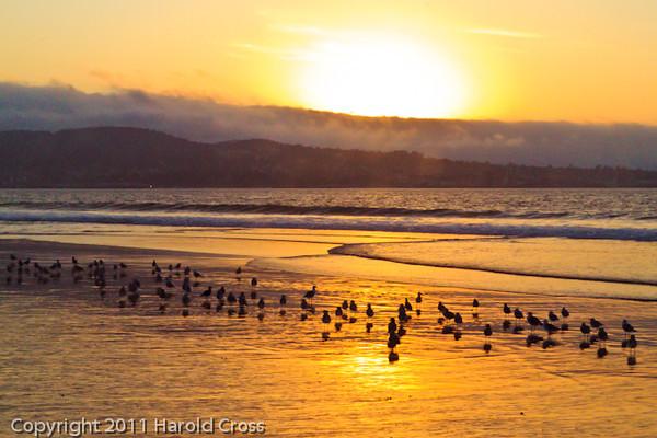 A landscape taken Sep. 29, 2011 near Monterey, CA.