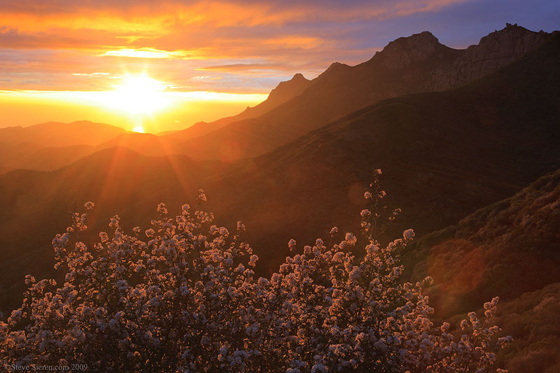 Sunset in the Santa Mountains with the Tri Peaks in view and blooming california lilacs in the foreground.  A beautiful example of the Santa Monica Mountains.