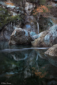 Whithering Autumn in Socal Santa Monica Mountains, Los Angeles County
