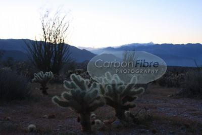 Night Falling, Anza-Borrego Desert