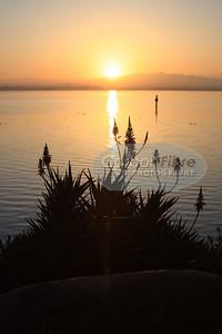 San Diego Dawn III