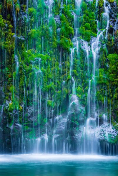 Vertical Waterfall Through the Moss
