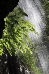 Hedge Greek Falls Hike