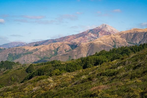 Andrew Molera State Park in California