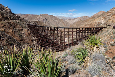 Goat Canyon Trestle and Yucca Plants