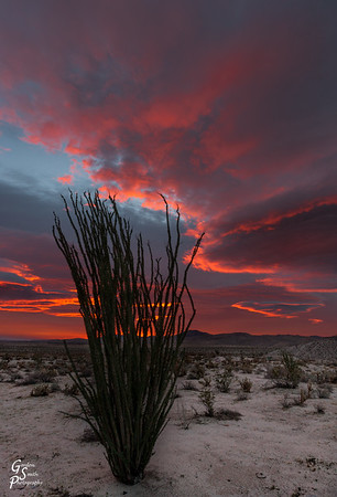 Red Sunrise Anza Borrego