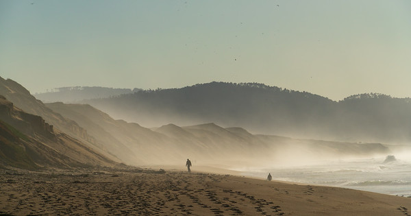 A Misty Morning at Fort Ord Dunes State Park