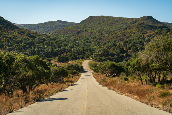 Down the Road at Fort Ord National Monument
