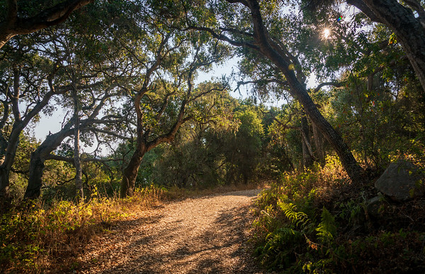Garland Ranch Regional Park in Carmel
