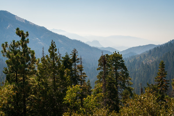 Smoke from Forest Fire Fills at the Valley at Giant Sequoia National Monument