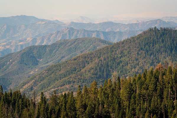 Forest Fire Smoke over Giant Sequoia National Monument