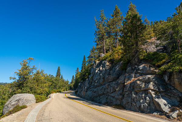 Road up Mountain at Giant Sequoia National Monument