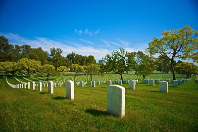 Row on Row of Tombstones