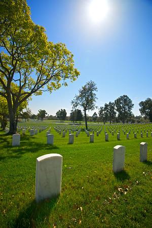 Long View of Gravestones