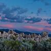 Mono Lake tufa at sunrise