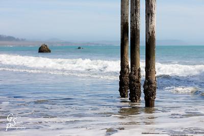 Three Pilings and Pacific Ocean from San Simeon, California.