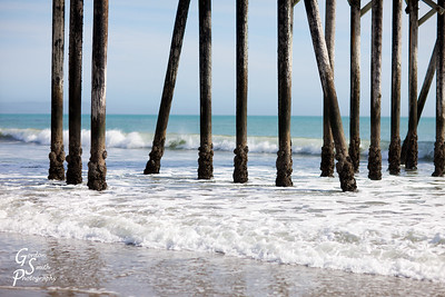 San Simeon Pier Pilings on a sunny afternoon.  The pilings stretch up at all angles.  The water is ice cold.