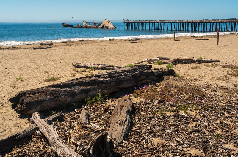 Seacliff State Beach and the S.S. Palo Alto