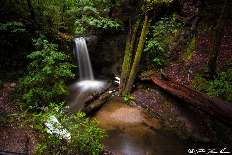 Redwood Waterfall