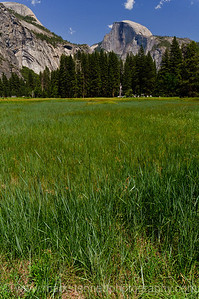 Yosemite Valley, Yosemite Nat'l Park, CA