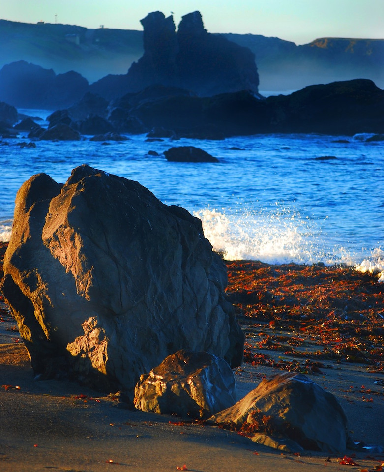 Bodega Bay Sept 2013 10