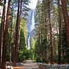 Yosemite - waterfall - June 2016