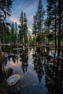 Pond at Mosquito Lake