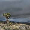 Sun and Clouds struggling in the Winter desert of Joshua Tree NP