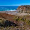 "Coastal California's ""Fall Colors"""