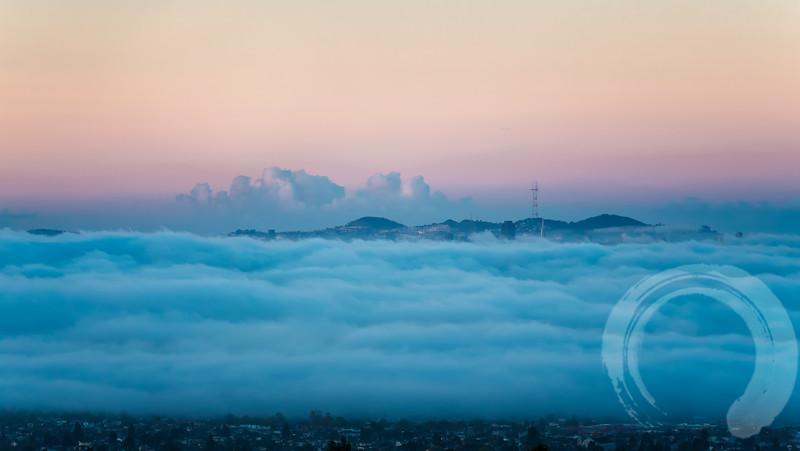SF Fog