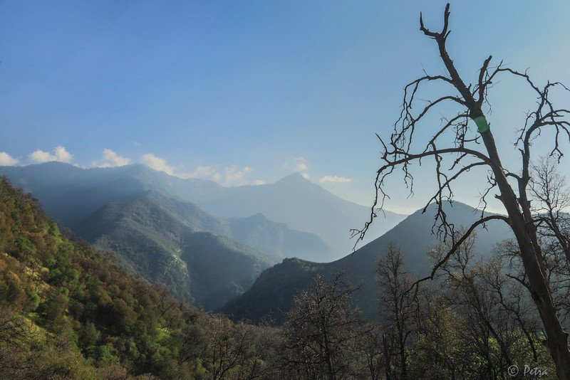 Morning view of Sequoia Valley from the road to Sequoia Mountain - at approximately  4000 feet  elevation