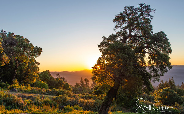 Sunrise from the Santa Cruz Mountains