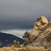 Storm is approaching while the Sun still lights up the Rocks in Joshua Tree NP.