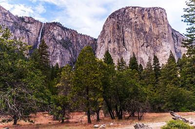 Yosemite Valley, Yosemite Nat'l Park, CA