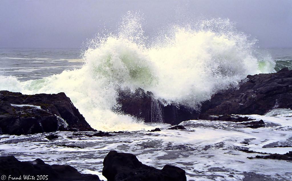 Surf & tide pools