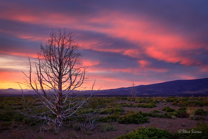 Shasta County, California<br /> Cascade Range