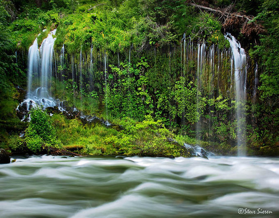Green Paradise at Mossbrae Falls<br /> Southern Cascade Range, Northern California