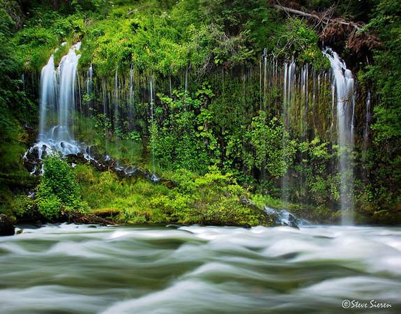 Green Paradise at Mossbrae Falls<br /> Southern Cascade Range, Northern California