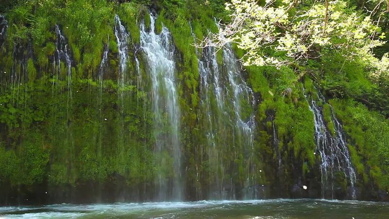 A short clip of Mossbrae Falls