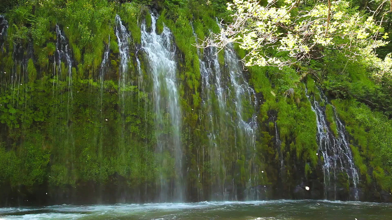 A short clip of Mossbrae Falls