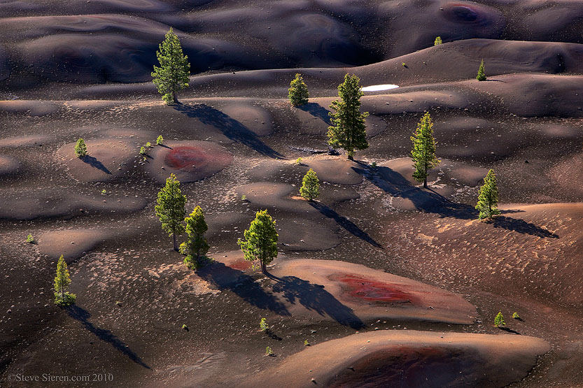 Rolling hills with backlit pine trees in Lassen Volcanic National Park