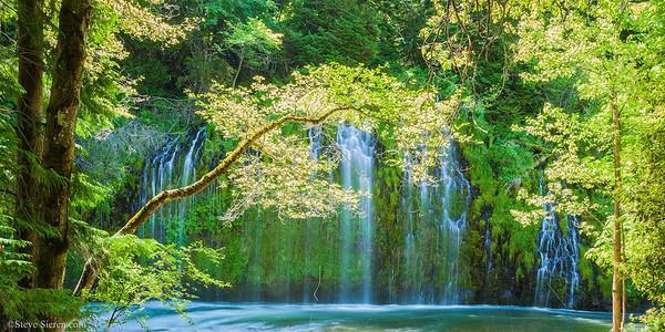 Mossbrae Falls Northern California